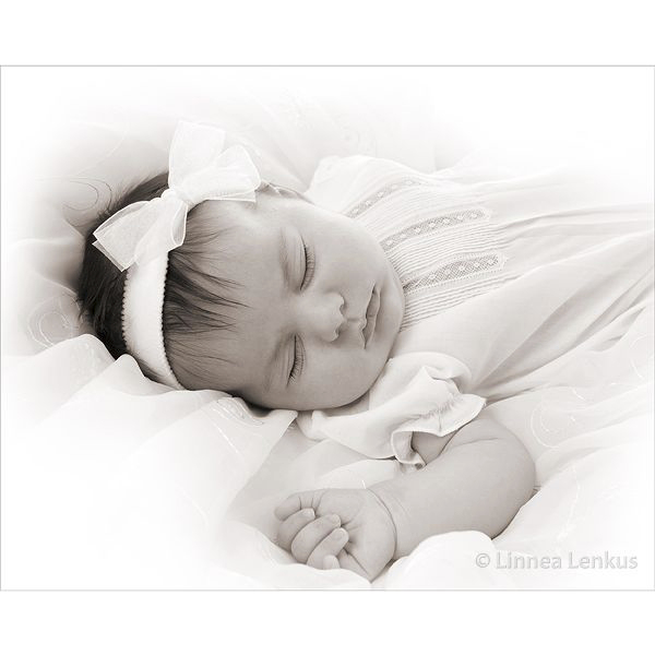 Newborn Family Photography Los Angeles