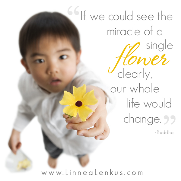 Inspirational Quote Miracle of a single flower