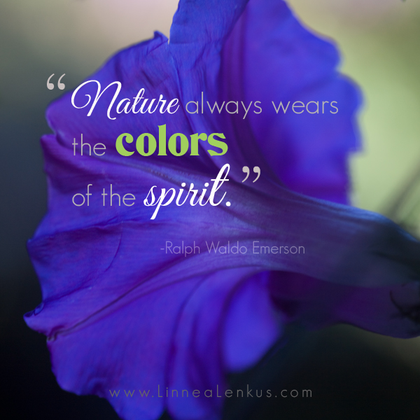 Ralph Waldo Emerson Nature Quote by Photographers Los Angeles