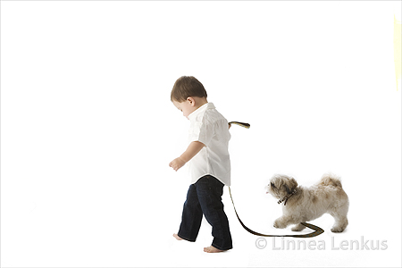 Family and Pet Photographer