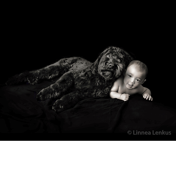 Baby and Dog Photography